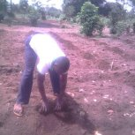 Planting Cassava at Hope Orphan Centre Iganga