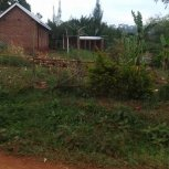 Please Support Our New Orphanage Home