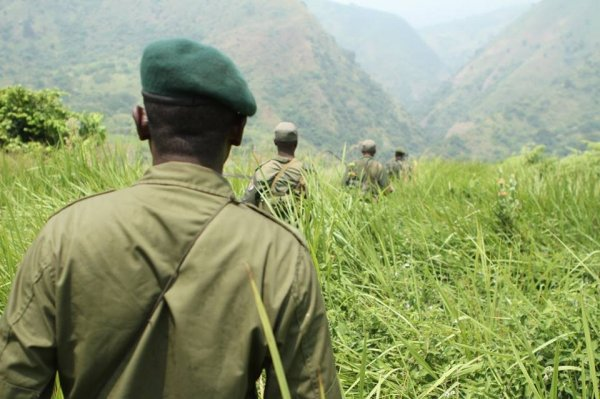 Virunga Park Rangers on patrol