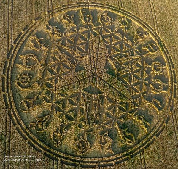 UK Crop Circle 2016