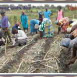 Slider 1 Farming God's Way-3