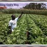 Slider 1 Farming God's Way-1